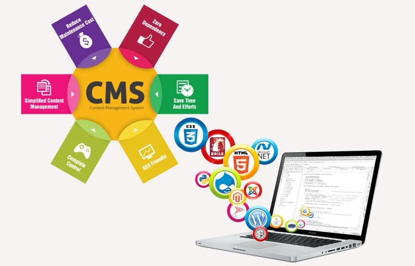 CMS-Web-Development